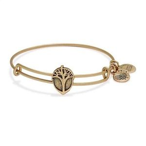 Unexpected Miracles Tree slider alex and ani